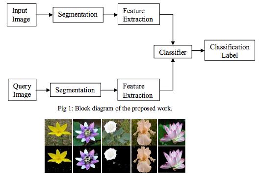 classifier example